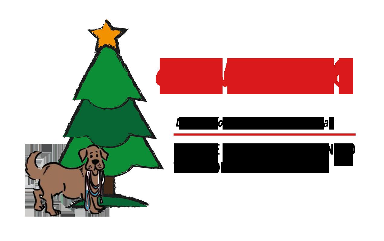 Christmas Grace.Christmas For Saving Grace Animals Saving Grace